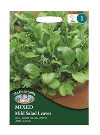 JAUKTI SALĀTI Maigas salātu lapas