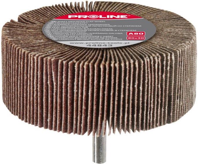 Proline A80 Sanding Disc 80x30mm