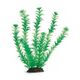 Akvariumo augalas Beeztess, 3,5 x 12 x 35 cm