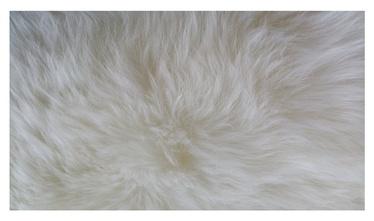 Põrandavaip Double-L 180x60, valge