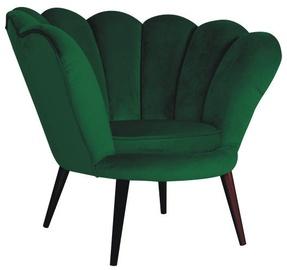 Signal Meble Magnolia Velvet Armchair Green/Wenge