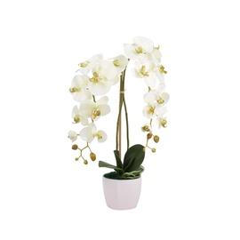 Dekoratīvais zieds orhideja 65x20x25cm