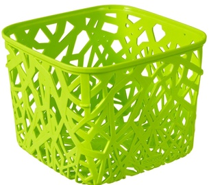 Curver Neo Square Basket Green