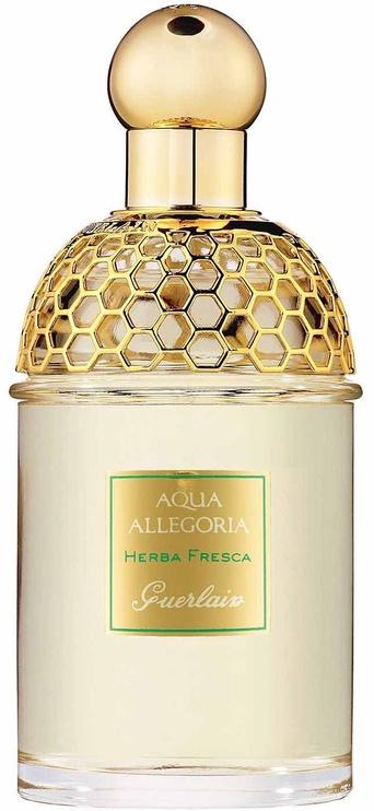 Kvepalai Guerlain Aqua Allegoria Herba Fresca 125ml EDT Unisex