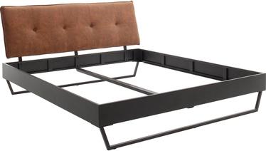 Lova Meise Möbel Boston 3, pilka, 221.5x186.5 cm
