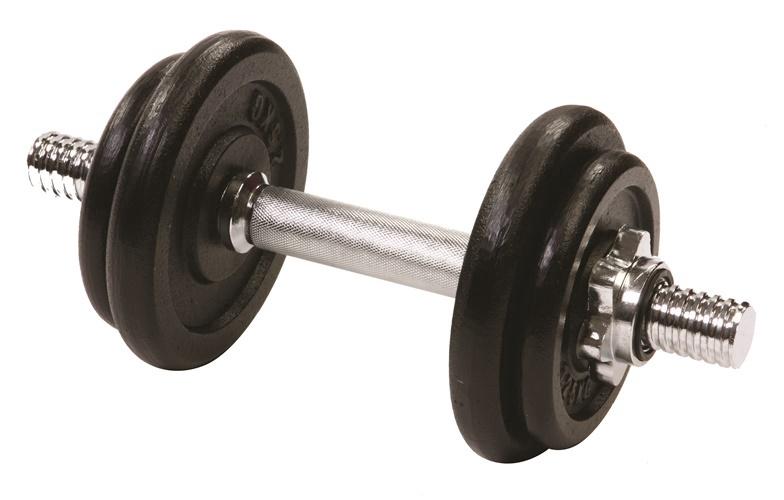 Surenkamas svarmuo YLDS10, 10 kg