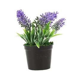 Dirbtinė gėlė vazonėlyje 98621, 14 cm