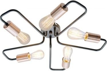 Candellux Herpe 35-66930 Ceiling Lamp 5x60W E27 Black/Copper