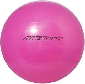 Axer Sport Standard Gym Ball 65cm Pink + Pump