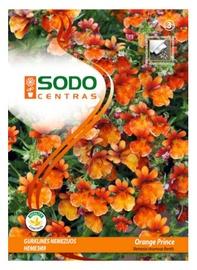 Nemēzijas sēklas Sodo Centras Orange Prince
