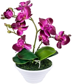 Home4you Orchid 3 Knotted H30cm Purple 73733