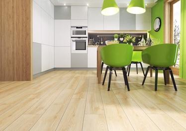 Lamineeritud puitkiudpõrand Domoletti Domoletti D3332, 10 mm, 33
