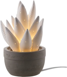 Nino Planta Table Lamp 25W E14 Ceramic