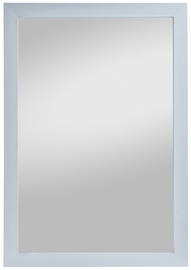 Spiegel Profi Mirror Kathi 48x68cm Gray