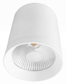 Lampa Light Prestige Zovo LP-32015/1SM WH, 15 W, 1 gab. (bojāts iepakojums)