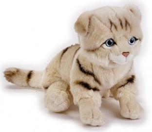 Dante National Geographics Scottish Cat 25cm