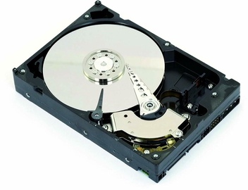 "Intenso 5TB 7200RPM 64MB 3.5"" SATAIII 6513133"