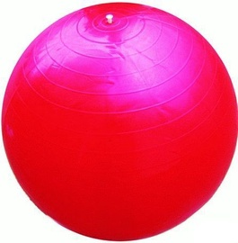 Arctix Aerobic Ball 90cm