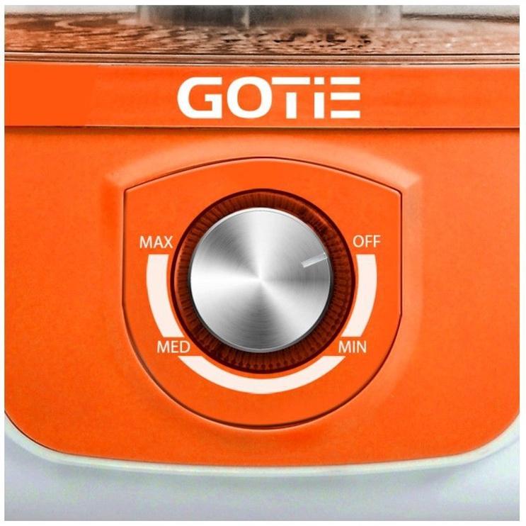 Gotie GSG-500