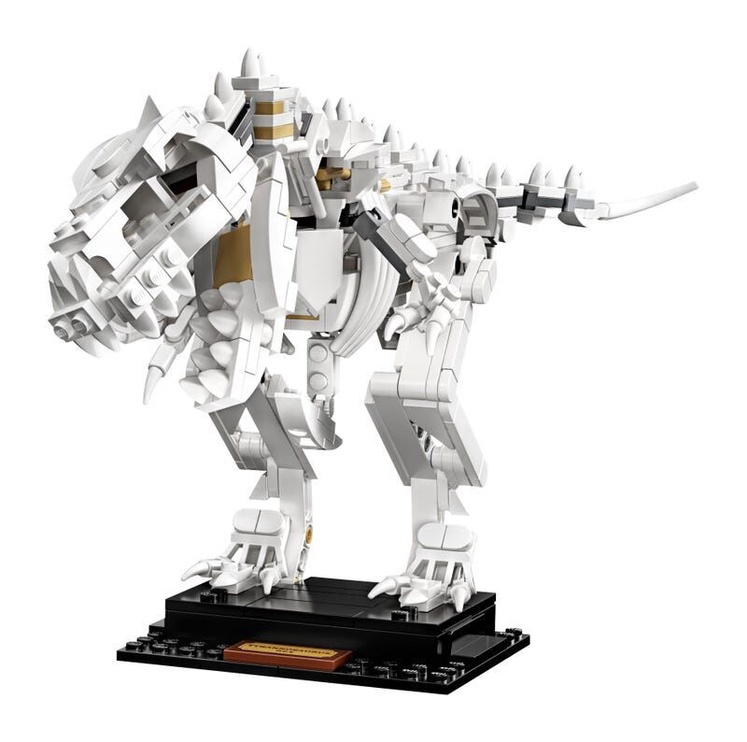 Constructor LEGO Ideas Dinosaur Fossils 21320