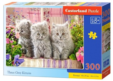 Castorland Puzzle Three Grey Kitten 300pcs