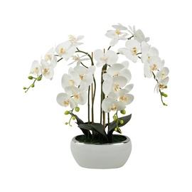 Dirbtinė orchidėja vazone, 70 cm