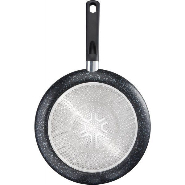Tefal Brut Pan 24cm C2640452