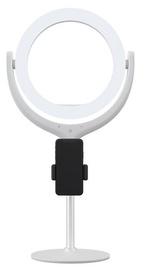 Apgaismojums Devia Phone Stand Holder, balta