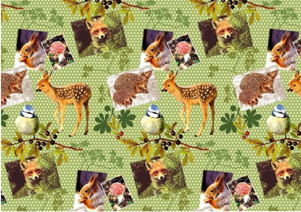 Susy Card Gift Wrap Wild Life