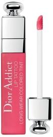 Lūpų dažai Christian Dior Addict Lip Tattoo Colored Tint 761, 6 ml