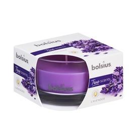 Svece 50/80 Lavender