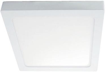 Kobi Sigaro Ceiling Lamp Square 18W LED White