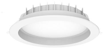 Gaismeklis LEDlife DLS-24WN-M LED Lamp 24W 2400lm 4000K White