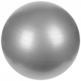 ProFit Exercise Ball 75cm Silver