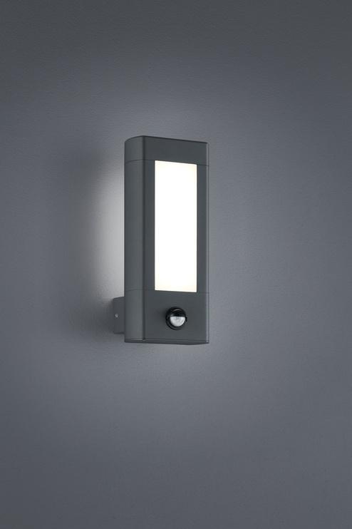 Светильник Trio Rhine 221669242, 2x4.5Вт, 3000°К, LED, IP54, aнтрацит