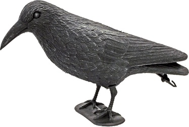 Diana Raven Decor