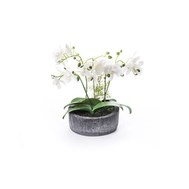 SN Artificial Orchid Flower Pot RU-578 36cm