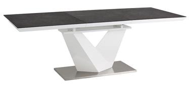 Kafijas galdiņš Signal Meble Alaras II Grey White, 1800x800x750 mm