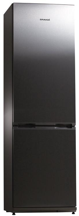 Šaldytuvas Snaigė RF34NG-P1CB260