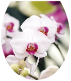 Karo-Plast Toilet Seat Strip F Orchidea