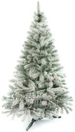 Dirbtinė Kalėdų eglutė AmeliaHome Lena Christmas Tree Green With Snow 220cm (pažeista pakuotė)