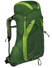 Osprey Exos 38 Tunnel Green L