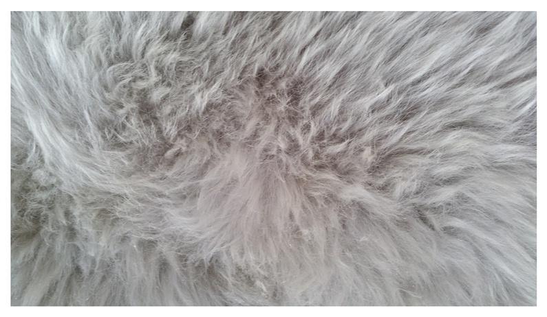 Aitādas paklājs Futura, 90x60cm, pelēks
