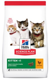 Hill's Science Plan Kitten Food w/ Chicken 7kg