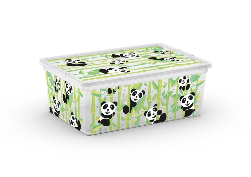 KASTE C box ANIMALS S (KIS)