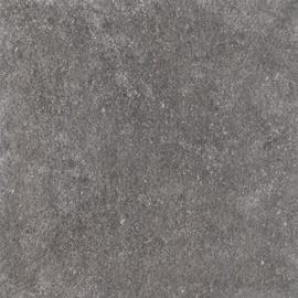 Akmens masės plytelės Spectre Grey, 60 x 60 cm