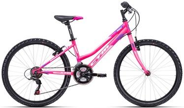 """Vaikiškas dviratis CTM Mony 13"""" 24"""" Pink 20"""
