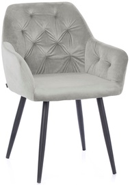 Homede Argento Chairs Silver 2pcs