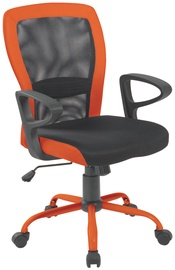 Evelekt Leno 27783 Gray / Orange