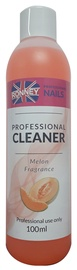 Ronney Cleaner With Melon Fragrance 100ml